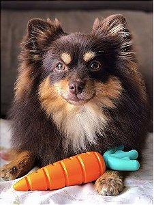 Mordedor Cenoura de Nylon - Buddy Toys