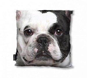 Capa de Almofada de Pelúcia - Bulldog Francês