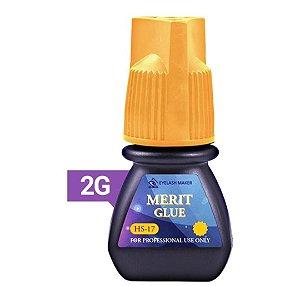 Merit Glue 2g Hs-17