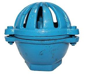 """Válvula Retenção Vertical Poço Ferro Fundido 4"""" (cebola)"""