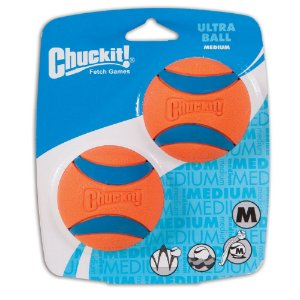 Bola Chuckit Ultraball M - Pack com 2
