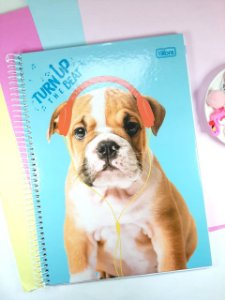 Caderno Cachorro e Gato Tilibra