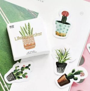 Adesivos Caixinha Flores e Plantinhas
