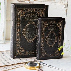 Conjunto de Livros Decorativo