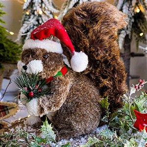 Esquilo Marrom de Natal