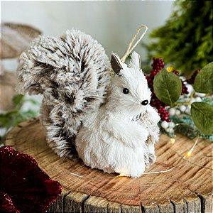Esquilo em Pé Branco