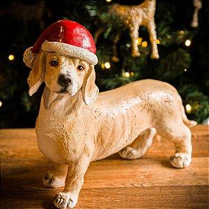 Cachorrinho Dachshund com Gorro de Natal