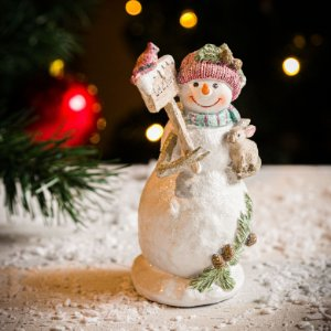 Boneco de Neve com Bichinhos