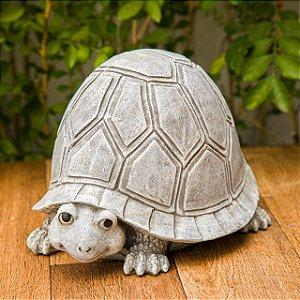 Tartaruga Decorativa Garden
