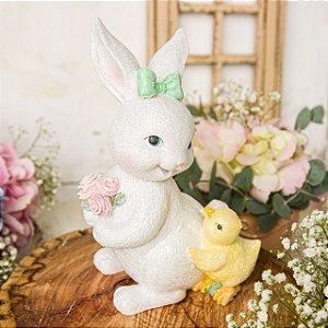 Coelha Missi com seu Amigo Pintinho
