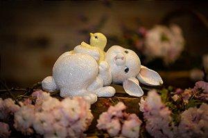 Coelha Lily Brincando com Pintinho 🐰😂🐥 (Pré Venda)