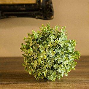 Buchinho de Grama Imperial Verde - 15 cm