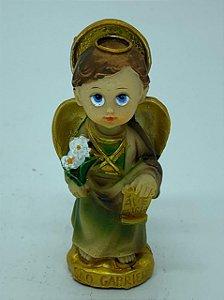 São Gabriel Arcanjo Infantil (8261)