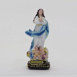 Nossa Senhora da Imaculada Conceição 11,5 cm (8000)