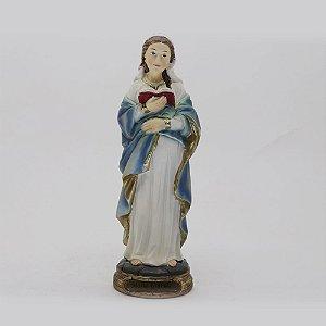 Nossa Senhora Grávida 20 cm (2765)