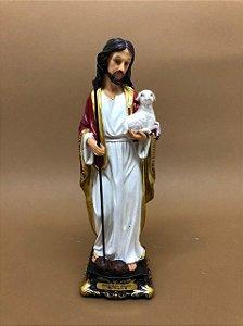 Jesus Bom Pastor 20 cm (A3673)
