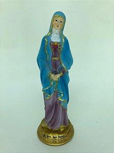 Nossa Senhora das Dores 17 cm (4362)