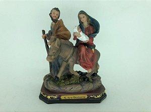 Nossa Senhora do Desterro 13,5 cm (8193)