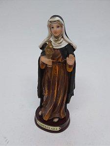 Santa Clara resina 14 cm