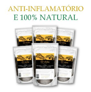 FLON TEA - Chá 100% natural com Gengibre + Canela + Cúrcuma + Alfavacão + Uncária.  (6 Sachês de 50g / Consumo para 36 dias / VAL.: MAR/2019)