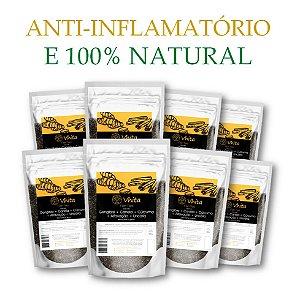 FLON TEA - Chá 100% natural com Gengibre + Canela + Cúrcuma + Alfavacão + Uncária.  (8 Sachês de 50g / Consumo para 48 dias / VAL.: MAR/2019)