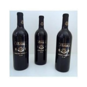 Vinho Vanisul Tinto suave 750 ml