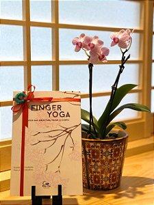 Edição Limitada: Livro Finger Yoga + massageador de dedos