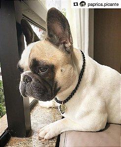 Colar Pet Pérolas SIMPLES para Cães e Gatos