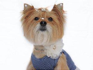 Colar Pet LARAH para Cães e Gatos