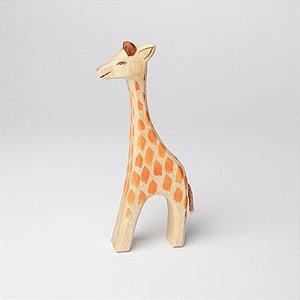 Girafa Fêmea