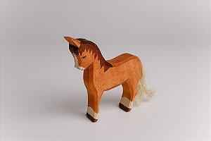 Égua / Cavalo Fêmea