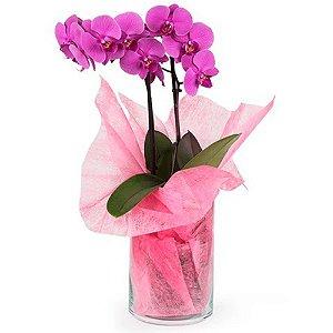 Arranjo de Orquídeas Artificiais no Vaso de Vidro