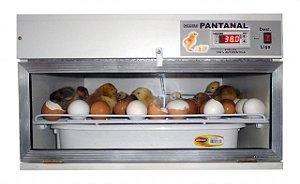 Chocadeira Pantanal SEMI-AUTOMATICA 120 ovos de galinhas, 100% Digital, Ventilação Forçada