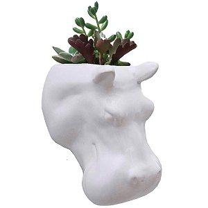 Vaso de Parede Cachepot Hipopótamo Branco Porcelana