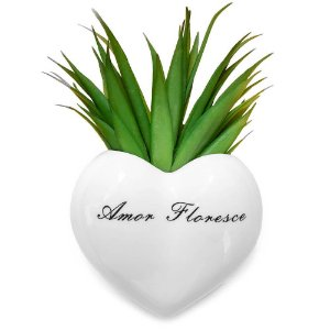 Vaso de Parede Cachepot Coração Amor Floresce