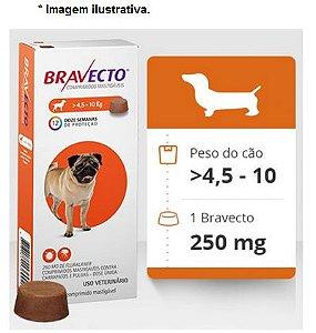 Antipulgas e Carrapatos Bravecto 4,5 a 10kg para Cães - 250mg