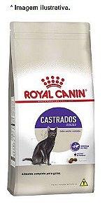 Ração Royal Canin  Castrados Sterilised para Gatos Adultos 10,1kg