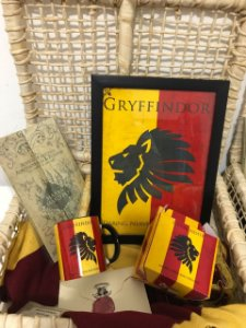 Kit Harry Potter - Grifinória (9 Itens)