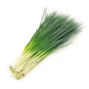 Sementes Cebolinha Verde Todo Ano