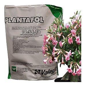 Plantafol Adubo 10-54-10 500g Floração Fracionado