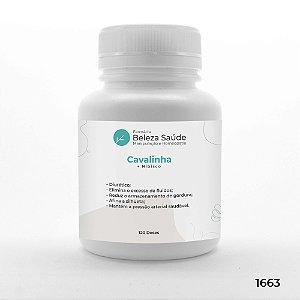Cavalinha + Hibisco - Inchaço e Retenção de Líquidos - 120 doses