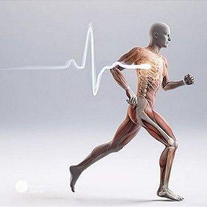 Glucosamina 1500 + 4 Ativos - Saúde das Articulações - 135 doses