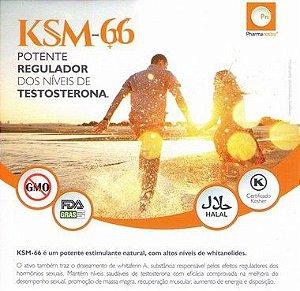 Ksm-66 500mg - Ativo Melhora o Desempenho e Aumenta Energia - 60 doses
