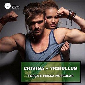 Crisina 250mg + Tribullus Terrestris 750mg : Massa Muscular, Libido, Aumento Testosterona