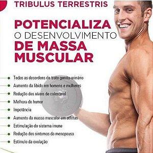 Tribulus Terrestris 500mg :  Força Muscular, Estimulante Sexual, Libido