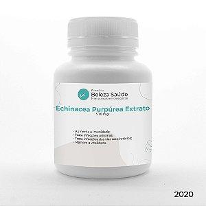 Echinacea Purpúrea Extrato 510mg ( Equinácea com 4% Polifenóis ) : Aumento da Imunidade, Reforço Antiviral