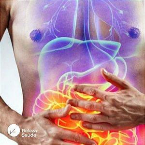 Probióticos para Digestão e Alívio Intestinal : Pool de Lactobacillus Curvatus + Plantarum + FOS - 120 doses