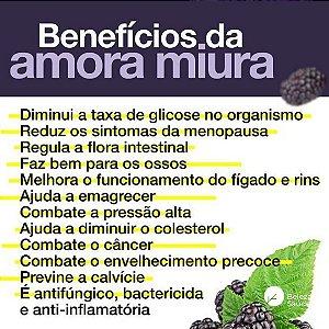 Amora Miura 500mg : 180 Cápsulas