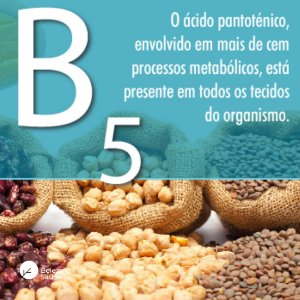 Vitamina B5 ( Ácido Pantotênico ) 500mg : 180 Cápsulas
