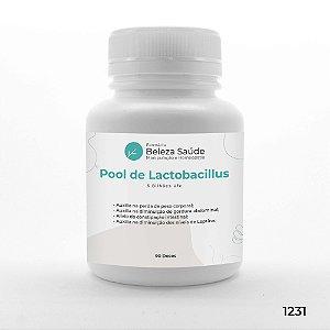Pool De Lactobacillus Emagrecedor 6 Bilhões Ufc - 90 doses